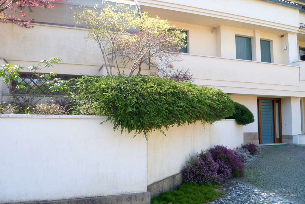 Villa in affitto a Conegliano, 10 locali, zona Località: Parco Rocca, prezzo € 2.100 | Cambio Casa.it