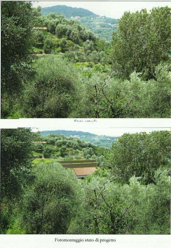 Stellanello Vendita Terreno Edificabile Immagine 4