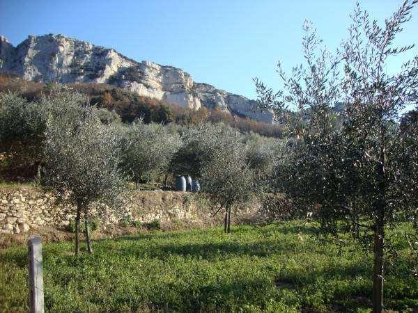 Terreno Agricolo in vendita a Orco Feglino, 9999 locali, zona Zona: Feglino, prezzo € 80.000 | Cambio Casa.it