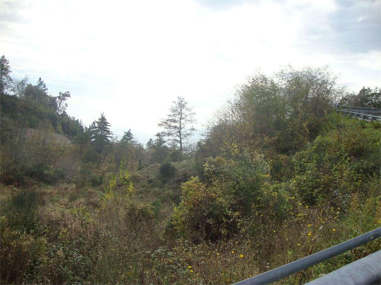 Terreno Edificabile Residenziale in Vendita a Tovo San Giacomo