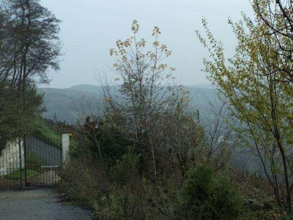 Castel Boglione Vendita Villa Immagine 2