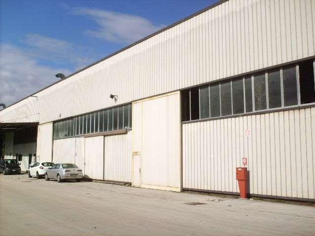 Capannone in vendita a Frosinone, 9999 locali, zona Zona: Periferia, prezzo € 350.000 | Cambio Casa.it