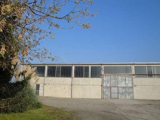 Capannone in affitto a Zibello, 1 locali, Trattative riservate | Cambio Casa.it