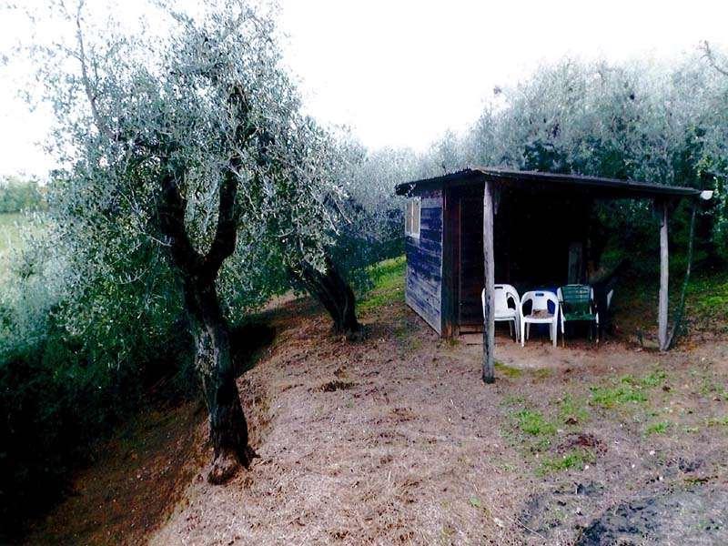 Terreno Agricolo in vendita a Casciana Terme Lari, 9999 locali, zona Località: Lari, prezzo € 15.000 | CambioCasa.it