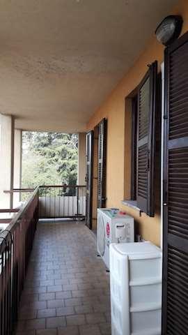 Appartamento in vendita a Cagno, 4 locali, prezzo € 127.000 | CambioCasa.it