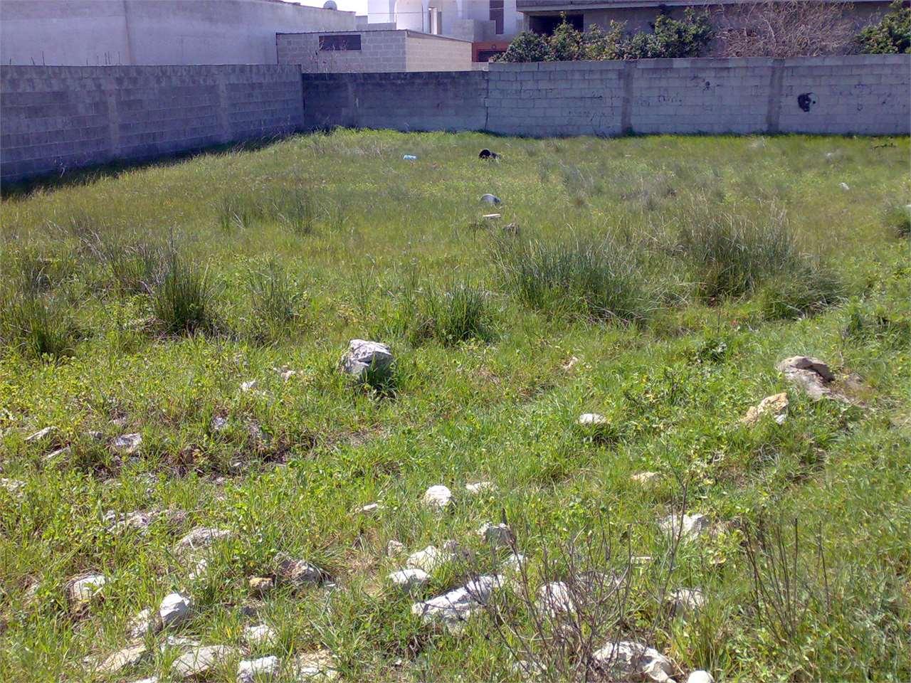 Terreno Edificabile Residenziale in vendita a San Donaci, 9999 locali, prezzo € 24.700 | Cambio Casa.it