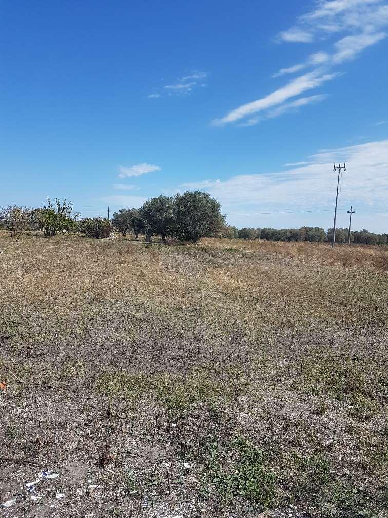 Terreno Agricolo in vendita a San Donaci, 9999 locali, prezzo € 15.000 | CambioCasa.it