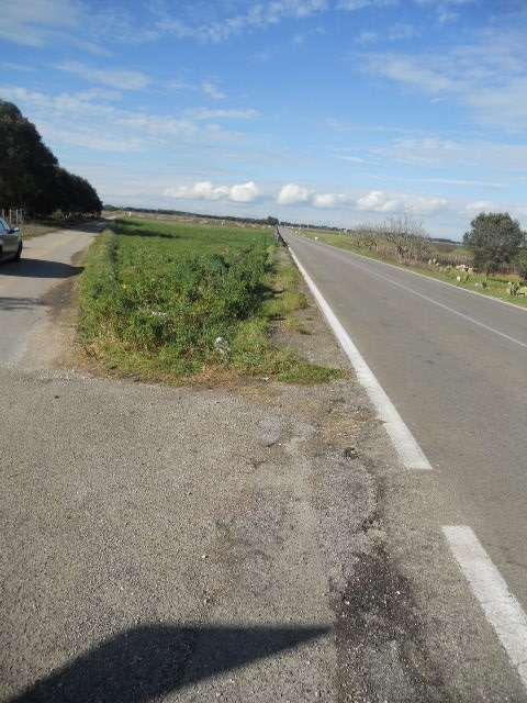 Terreno Agricolo in vendita a Guagnano, 9999 locali, prezzo € 25.000 | Cambio Casa.it