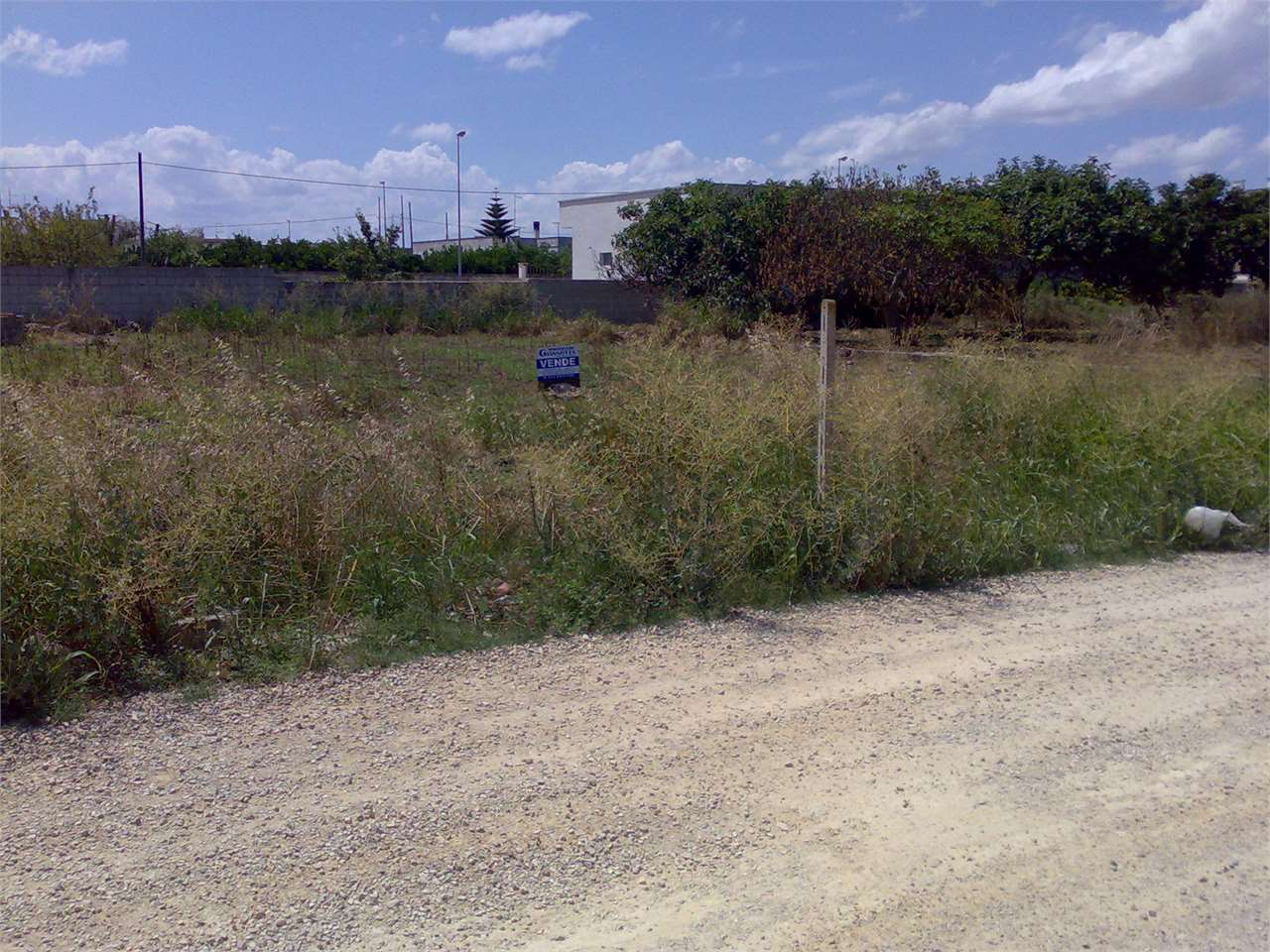 Terreno Edificabile Residenziale in Vendita a San Donaci