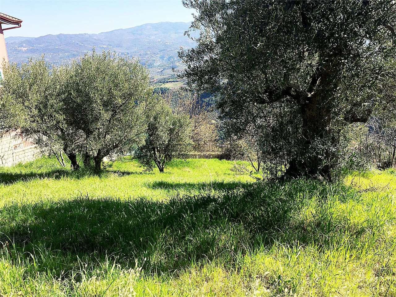 Terreno Edificabile Residenziale in vendita a Dipignano, 9999 locali, zona Zona: Laurignano, prezzo € 55.000 | Cambio Casa.it