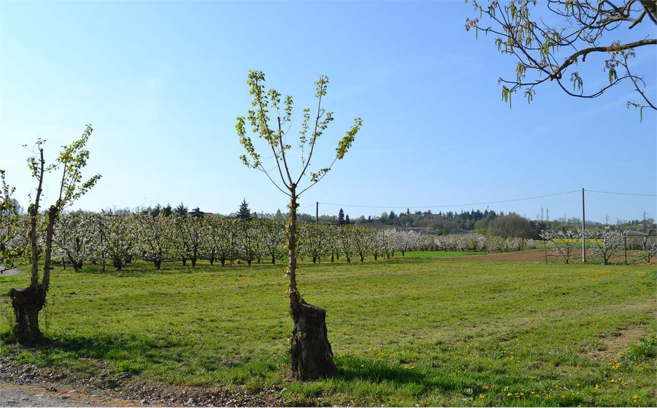 Terreno Edificabile Residenziale in Vendita a Vignola