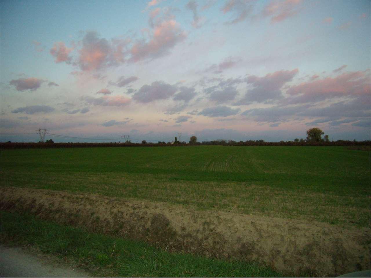 Motta di Livenza terreno agricolo+ rustico