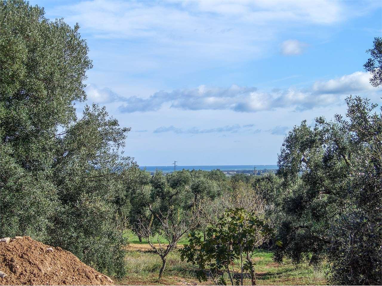 Villa Orizzonte - with sea view