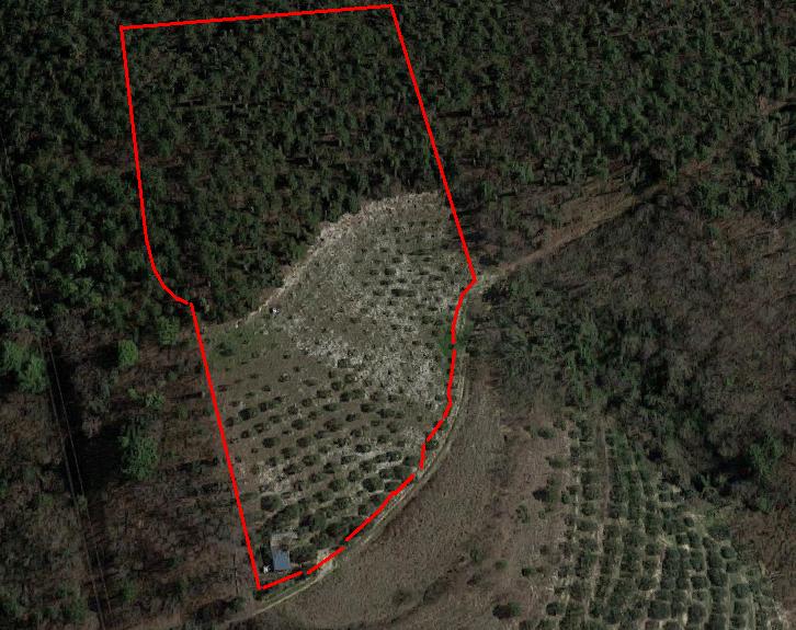 Terreno Agricolo in vendita a Tregnago, 9999 locali, prezzo € 58.000 | CambioCasa.it