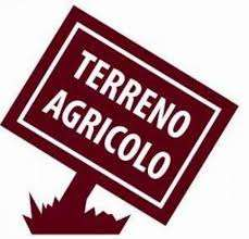 Vendita Terreno agricolo Terreno Ciriè Località Vastalla snc 226786