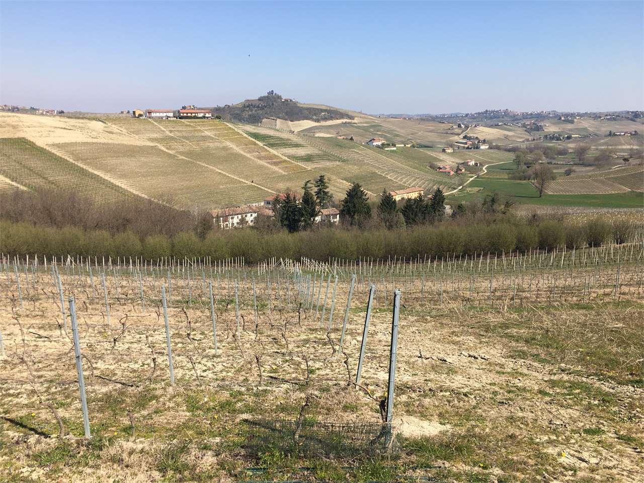 Rustico / Casale in vendita a Costigliole d'Asti, 25 locali, prezzo € 250.000 | PortaleAgenzieImmobiliari.it