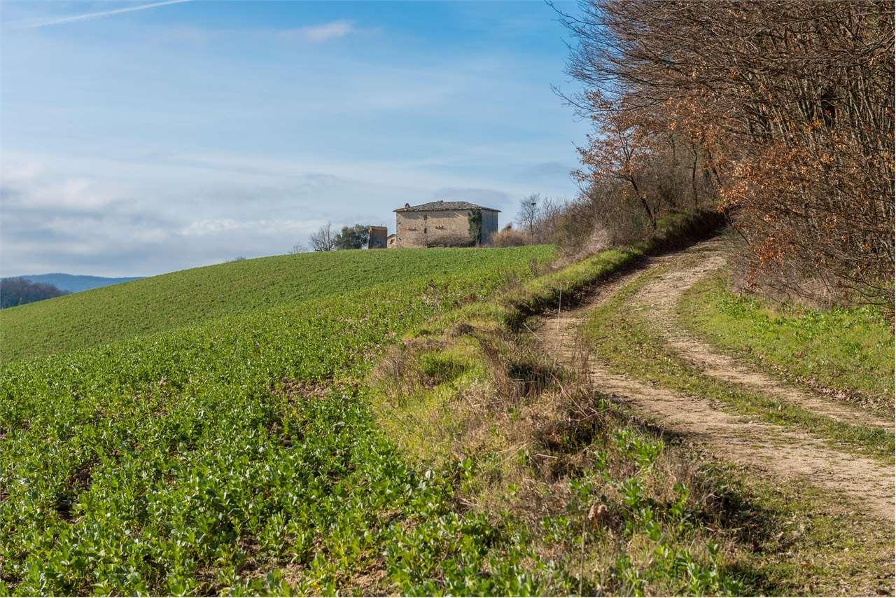 Azienda Agricola in vendita a Avigliano Umbro, 9999 locali, prezzo € 1.250.000 | CambioCasa.it