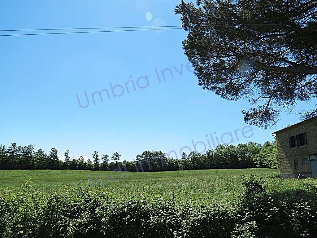 Azienda Agricola in vendita a Orvieto, 7 locali, prezzo € 550.000 | CambioCasa.it