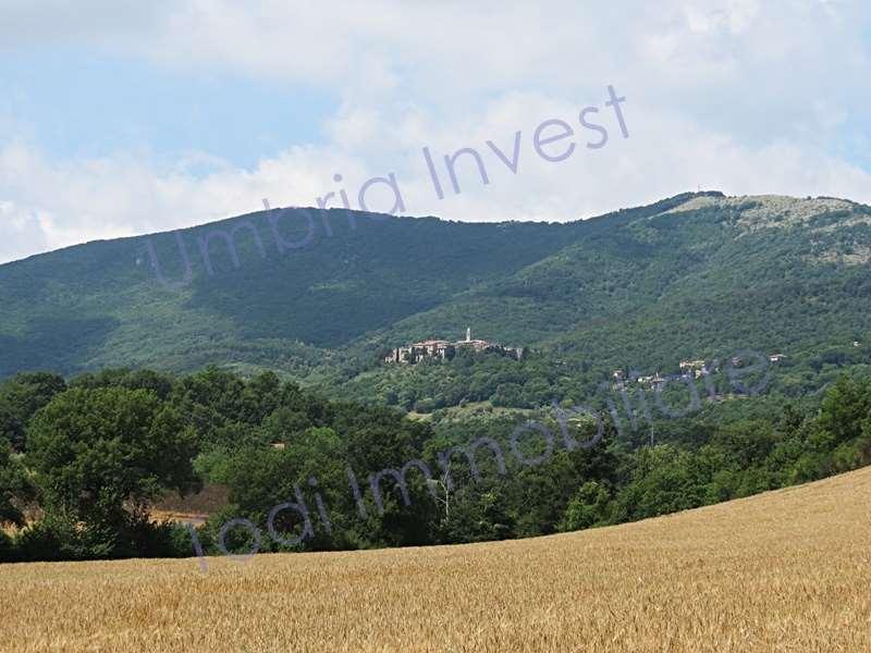 Rustico / Casale in vendita a Montecchio, 9999 locali, prezzo € 39.000 | CambioCasa.it