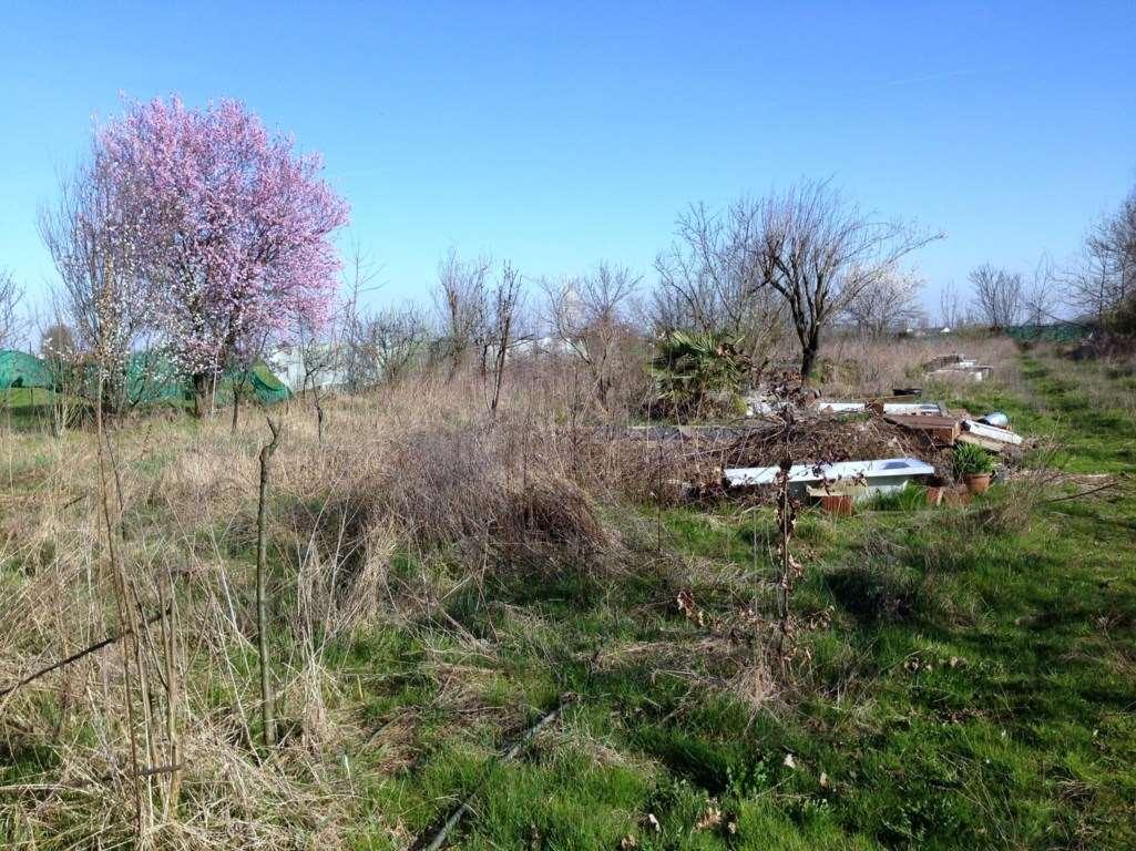 Terreno agricolo in vendita - 5570 mq