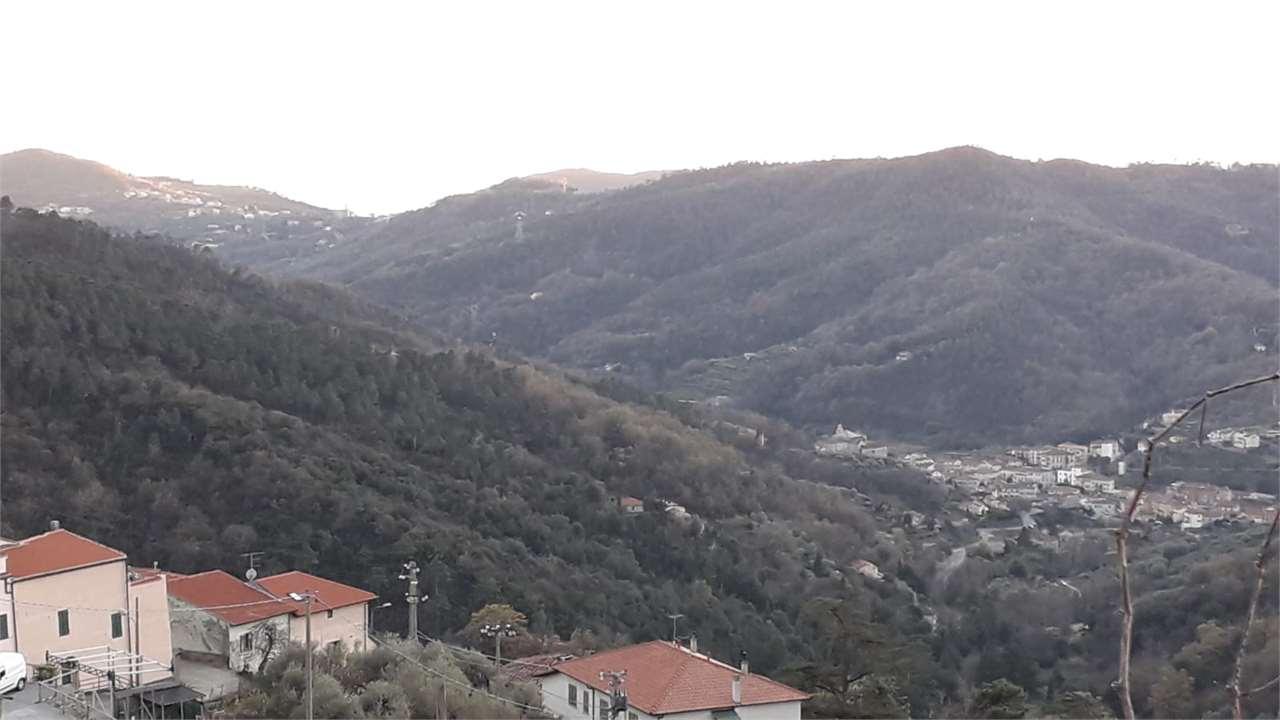Terreno Edificabile Residenziale in vendita a Calice Ligure, 5 locali, zona uta, prezzo € 57.000   PortaleAgenzieImmobiliari.it