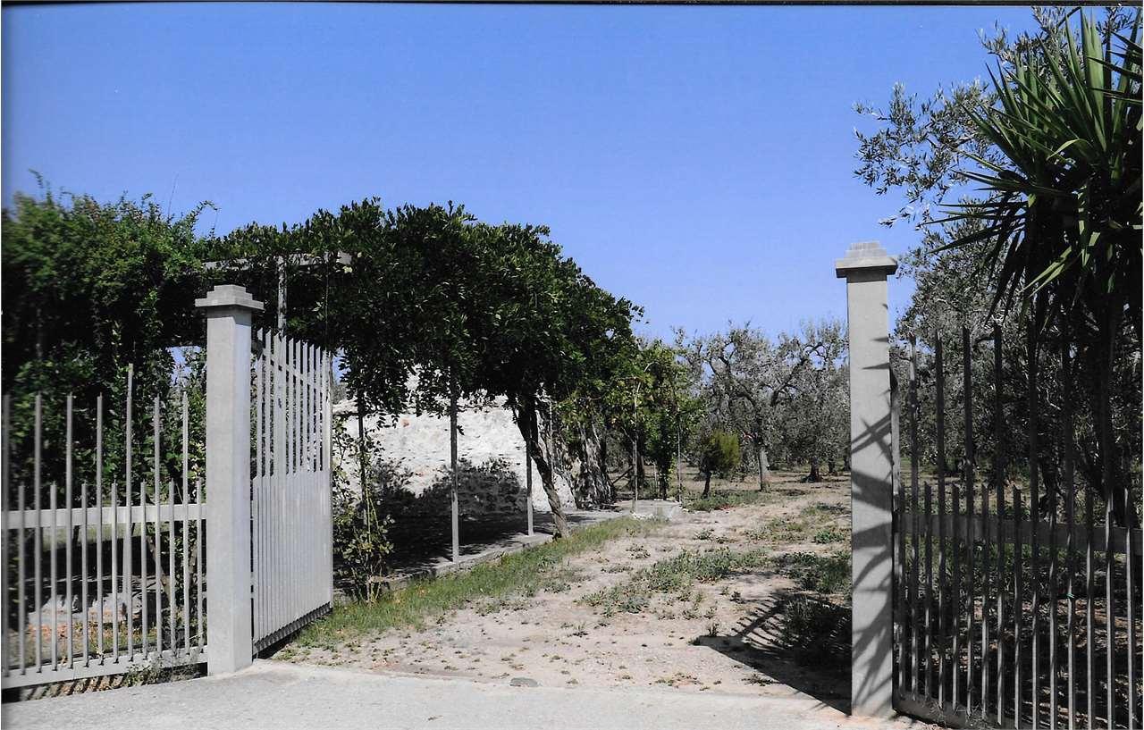 Terreno Agricolo in vendita a Cerignola, 1 locali, prezzo € 75.000   CambioCasa.it