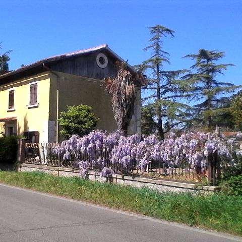 Villa in vendita a Canino, 3 locali, prezzo € 67.000   CambioCasa.it