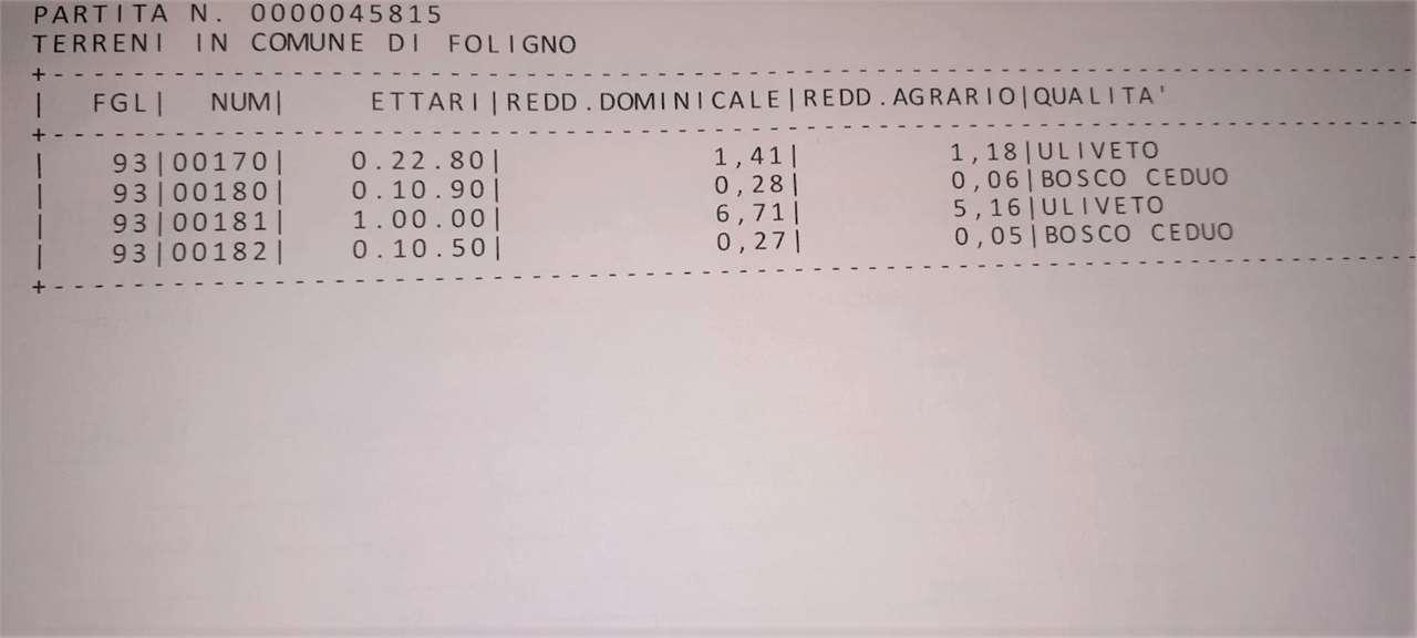 Terreno Agricolo Foligno V001349