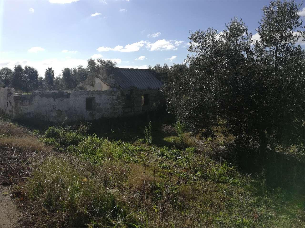 venditaAzienda AgricolaCasarano