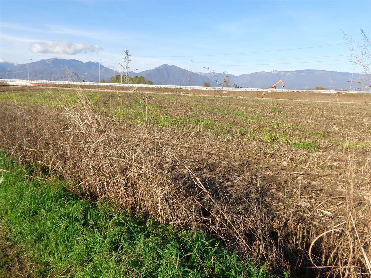 Terreno Agricolo in vendita a Malo, 9999 locali, zona Zona: San Tomio, prezzo € 58.000 | CambioCasa.it