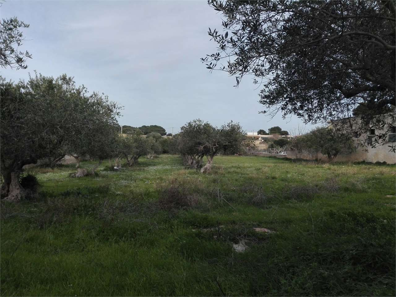 Terreno Agricolo in vendita a Marsala, 9999 locali, zona Località: Periferia lato Trapani, prezzo € 100.000 | CambioCasa.it