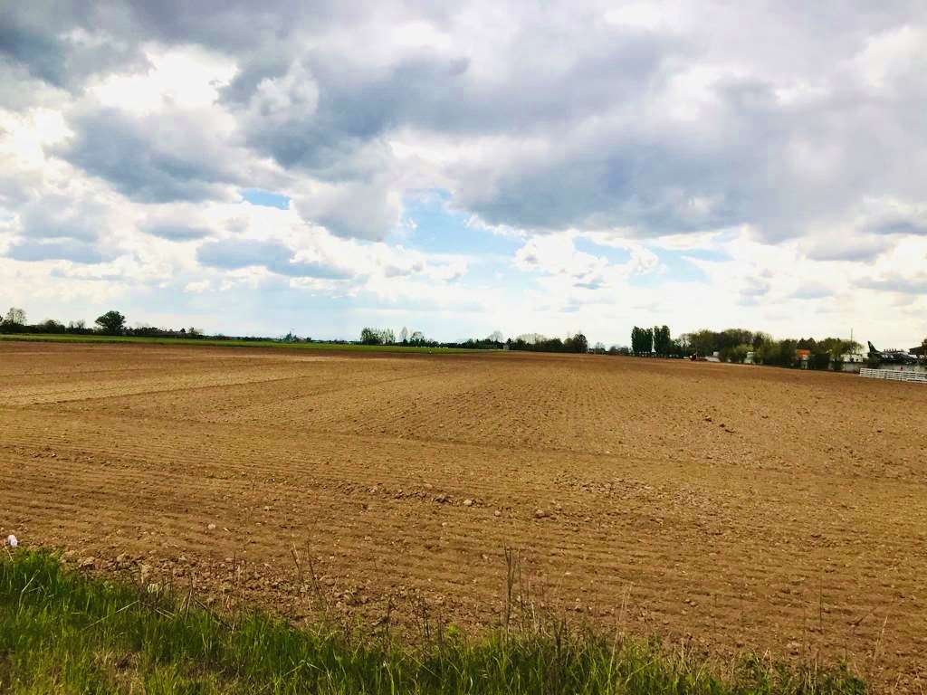 Terreno Agricolo in vendita a Curtatone, 1 locali, Trattative riservate   CambioCasa.it