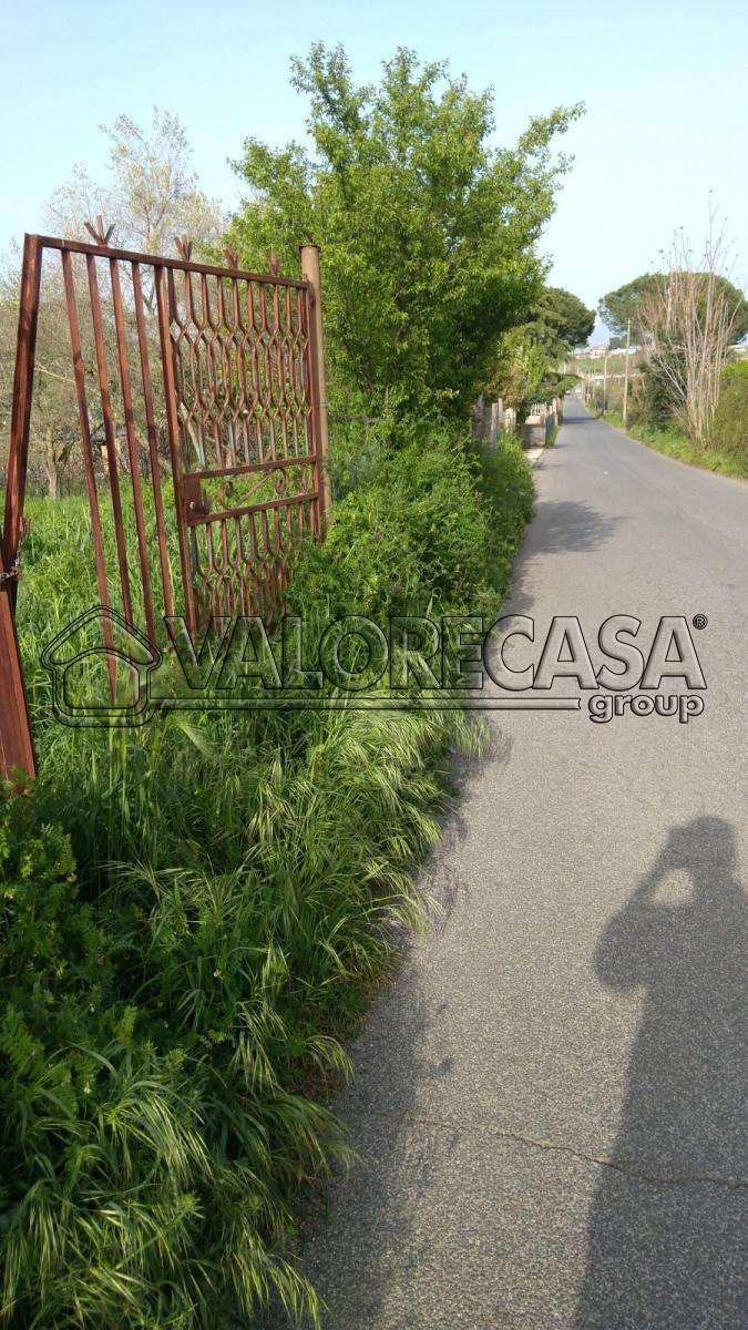 Terreno Agricolo Roma 49mel