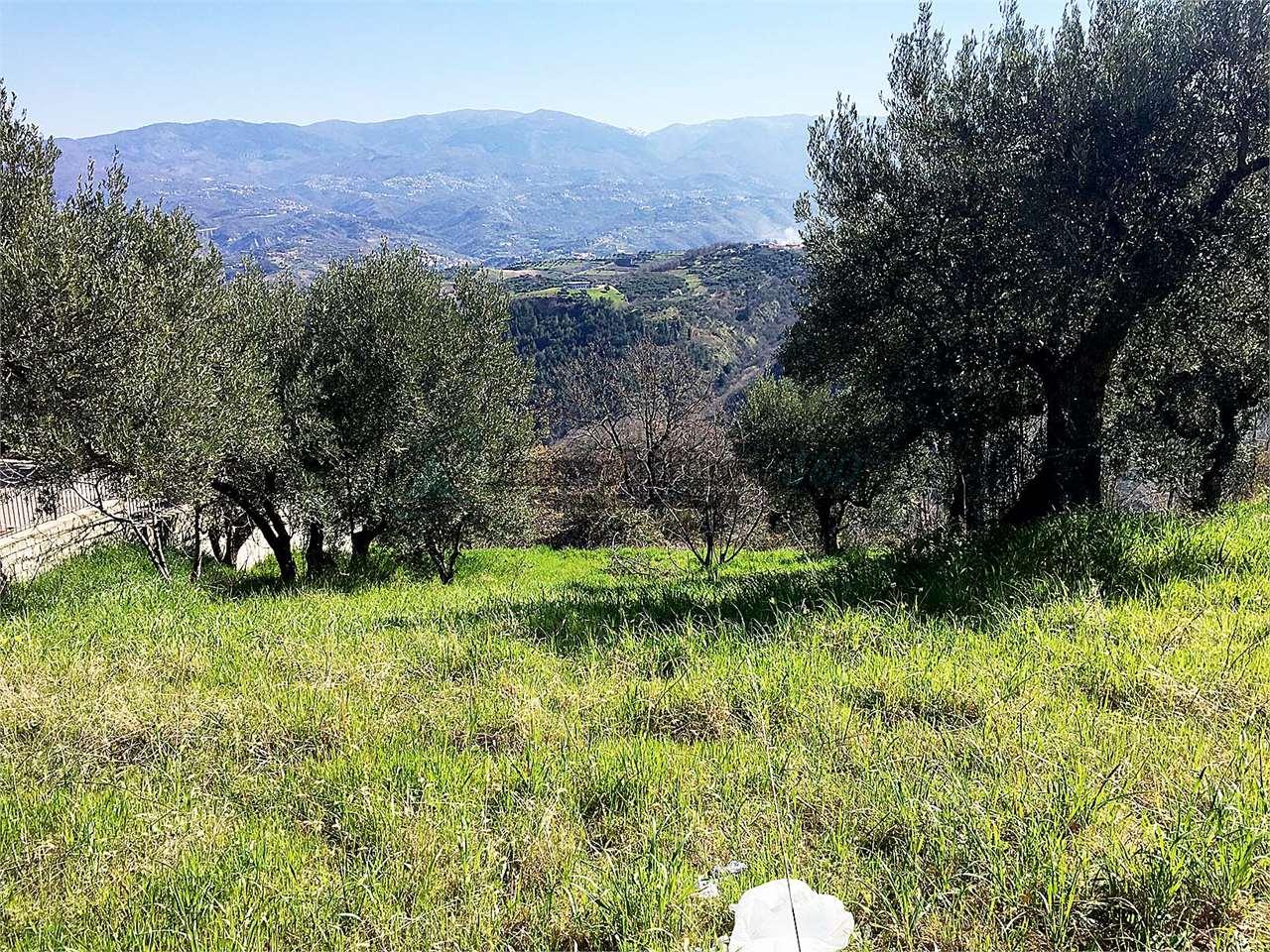 Vendita Terreno edificabile Dipignano