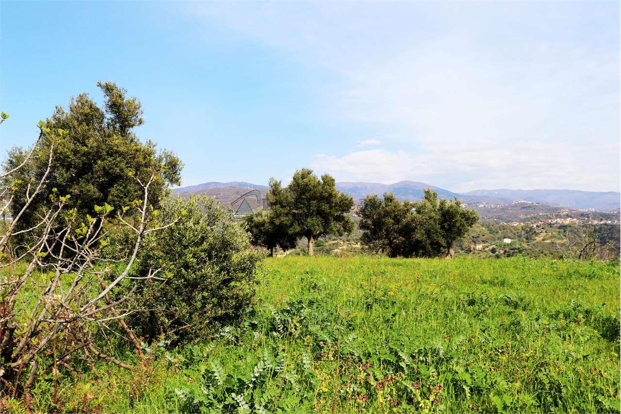 Vendita Terreno edificabile Zumpano