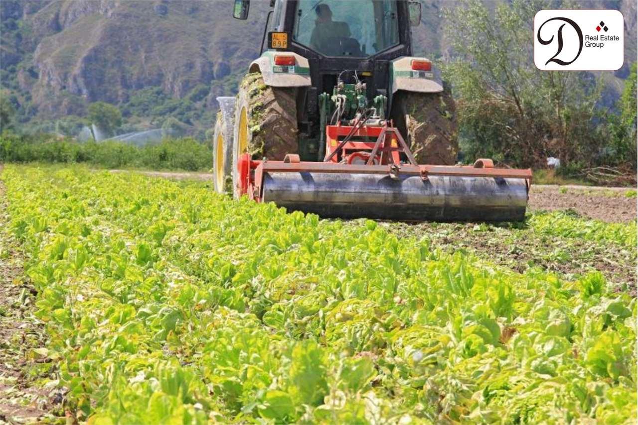 Terreno Agricolo in vendita a Albizzate, 9999 locali, prezzo € 69.000 | CambioCasa.it
