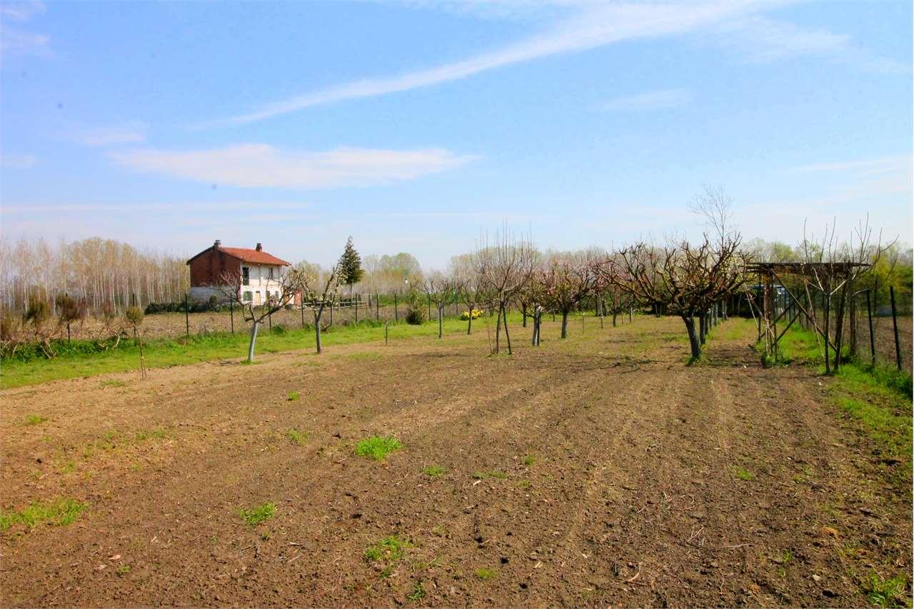 Terreno Agricolo in vendita a La Loggia, 1 locali, prezzo € 17.000 | CambioCasa.it