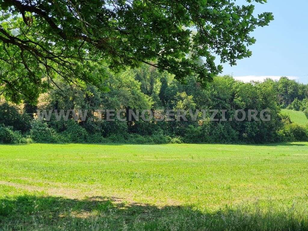 Terreno Agricolo in vendita a Savignano sul Panaro, 1 locali, zona Zona: Garofano, prezzo € 50.000 | CambioCasa.it