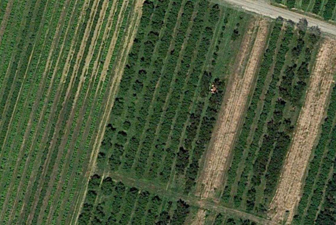 Terreno Agricolo in vendita a Vignola, 1 locali, prezzo € 72.000 | CambioCasa.it