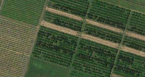 Terreno Agricolo in vendita a Vignola, 1 locali, prezzo € 90.000 | CambioCasa.it