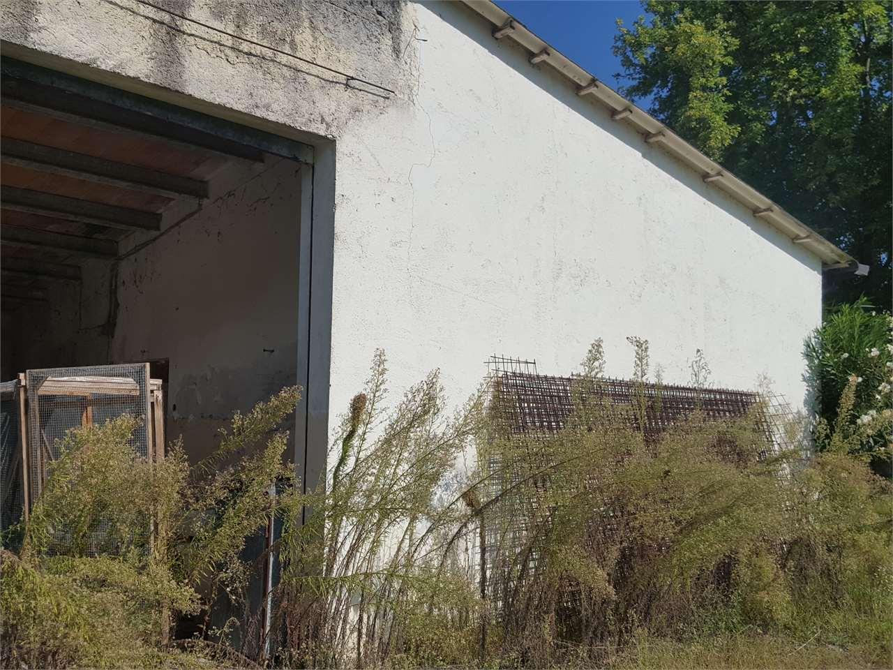 Vendita Villa singola Pasiano di Pordenone