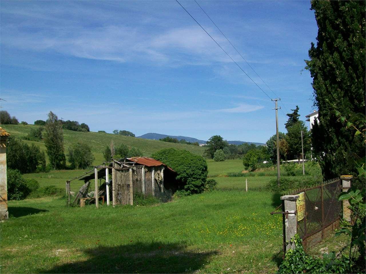 Osimo